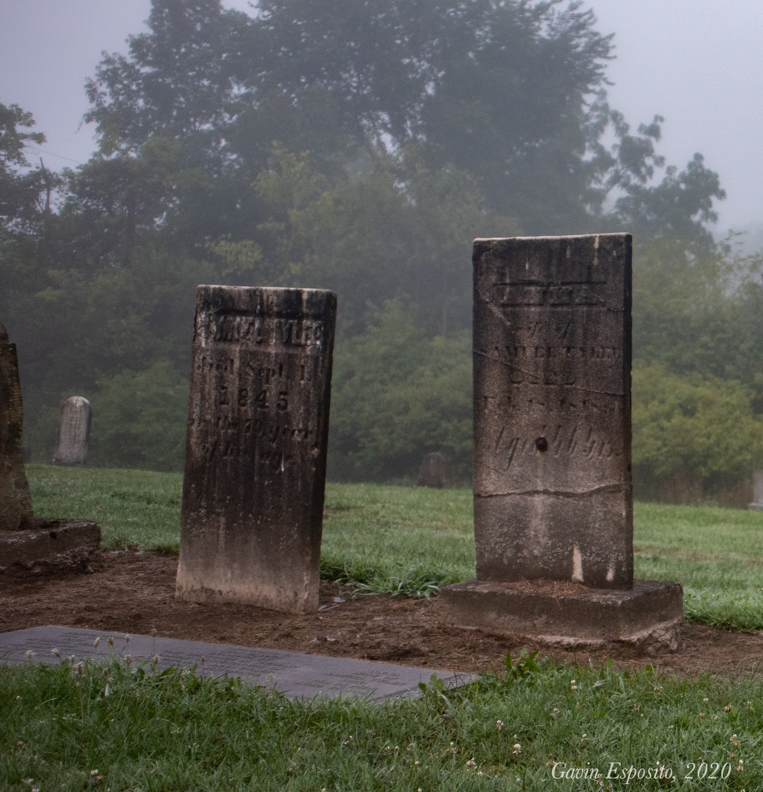 Samuel (left) and Anna (right) Tylee's headstones (Photo by Gavin Esposito).